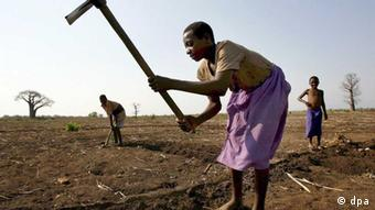 A woman tilling the land.
