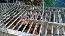 Verkaufstelle von Lebendgeflügel, Geflügelmarkt gilt als Virenbrutstätten in der Grippezeit. Markt Mengzi Xi Lu, Innenstadt Shanghai Copyright: DW/Cui Mu