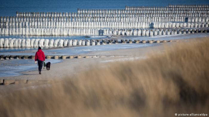 Ein Mann in roter Jacke spaziert mit seinem Hund am Strand