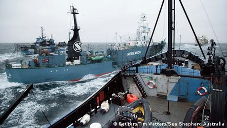 Japan issues complaint after whaling vessel collides with Dutch protest boat