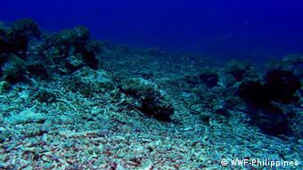 Rubble on a seabed