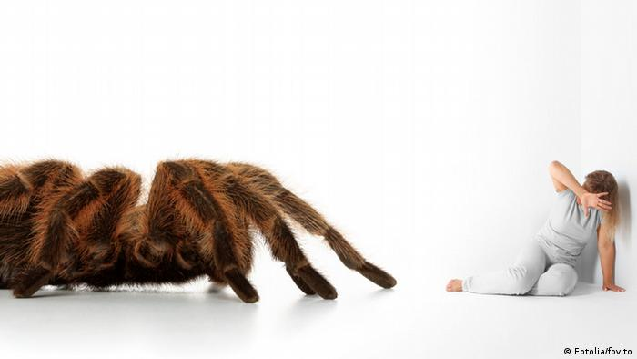 Symbolbild Phobie Arachnophobie