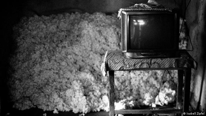 Bildergalerie Indien BT Baumwolle