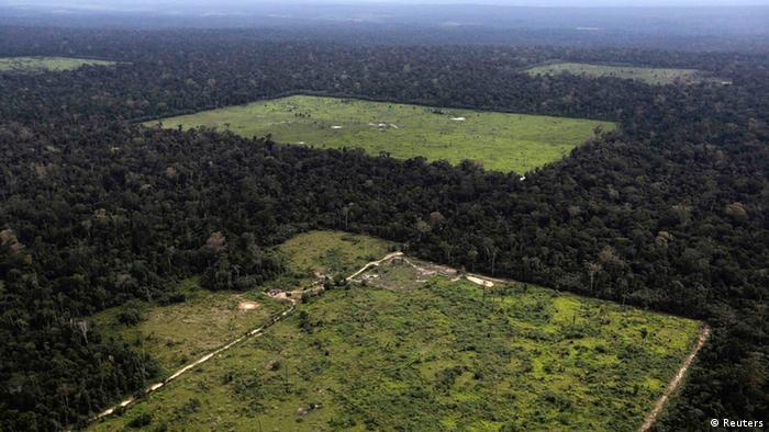 Vista aérea de floresta desmatada próxima a Santarém, no Pará