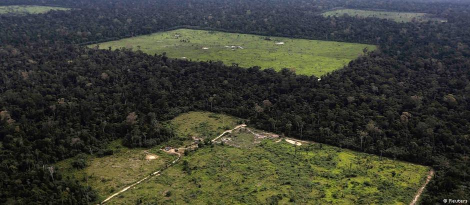 """""""Há mais de 650 milhões de hectares já desmatados onde se pode cultivar soja"""", diz relatório"""