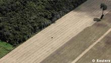 A tractor works on a wheat plantation on land that used to be virgin Amazon rainforest near the city of Santarem, Para state, in this April 20, 2013 file photo. To match Special Report BRAZIL-DEFOREST/ REUTERS/Nacho Doce/Files (BRAZIL - Tags: ENVIRONMENT CRIME LAW POLITICS BUSINESS)