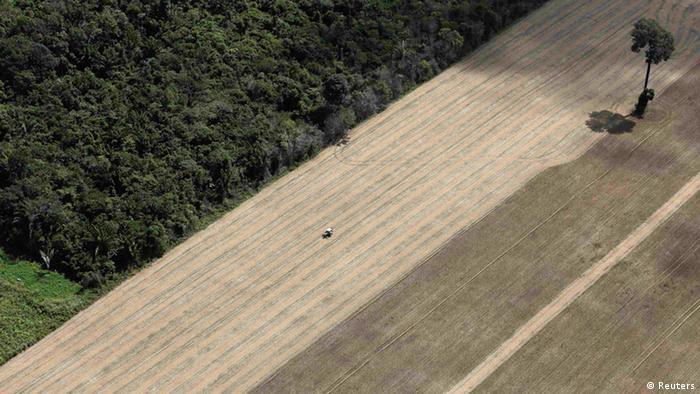 Amazonas Soja Plantage Archiv 2013 (Reuters)