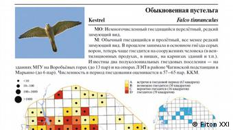 A page from the new planned Moscow bird atlas