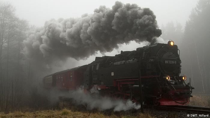 Steam engine through the Brocken portion of the Harz national park, Photo: DW / K. Sacks