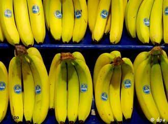 Einkaufsregal mit Bananen (Quelle: dpa)