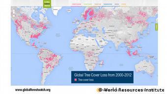 Grafik Global Forest Watch