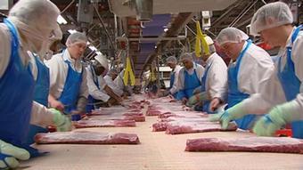 Proizvodnja mesa u Njemačkoj