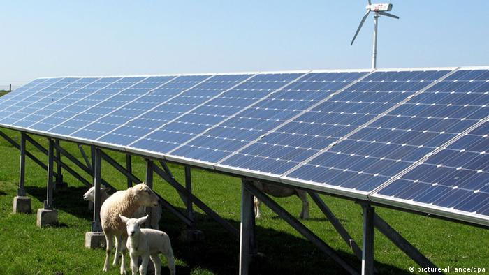 Solar panels in Pellworm (photo: picture alliance/dpa)