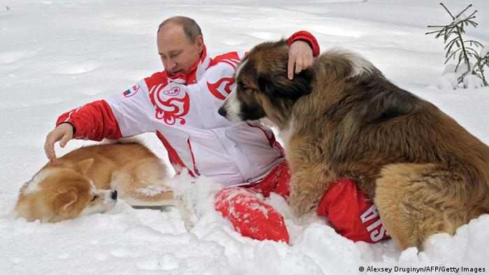 Putin mit Hunden (Alexsey Druginyn/AFP/Getty Images)