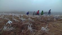 15.03.2014 DW hin & weg Aktion Nebelwanderung