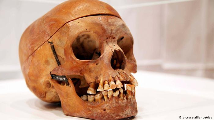 Crânio de nativo herero, da Namíbia, na Charité de Berlim