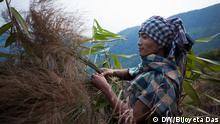 Bildergalerie Porträt Meghalaya - Schottland des Ostens