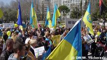 Ukraine Demo in Madrid 17.03.2014