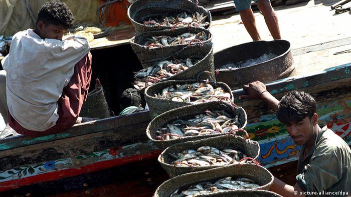 Pakistan fishermen in Karachi