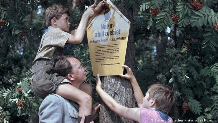 a boy on the shoulders of a man and another boy attach the sign to a tree