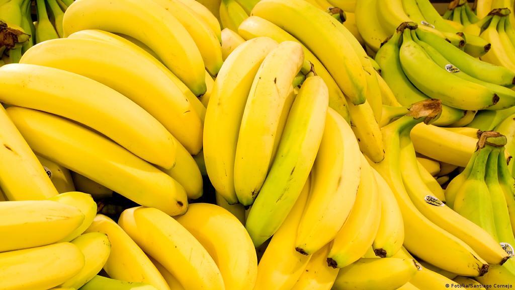 Gemeinsame Wie die Banane nach Deutschland kommt | Wirtschaft | DW | 26.03.2015 @ND_47