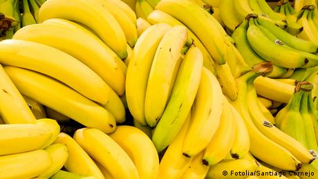 Banana fruit (photo: Fotolia/Santiago Cornejo)