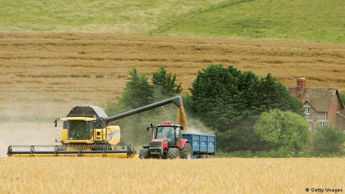 A combine harvester works its way through a field
