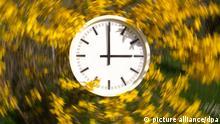 ILLUSTRATION - Eine Wanduhr hängt am 27.03.2014 in Stuttgart (Baden-Württemberg) in einem Forsythienstrauch (Effekt durch Langzeitbelichtung). In der Nacht vom 29. zum 30. März werden die Uhren um 2.00 Uhr um eine Stunde auf 3.00 Uhr vorgestellt. Foto: Sebastian Kahnert/dpa