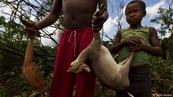 Buschfleisch Afrika Kinder Jagd Fleisch