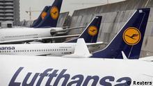 Lufthansa-Flugzeuge auf dem Frankfurter Flughafen