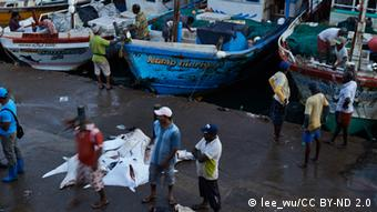 In Sri Lanka, fishing boats arrive with the days catch of manta (Photo: https://www.flickr.com/photos/13523064@N03/10990806295/)