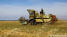 Landwirtschaft auf der Krim