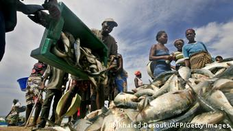Angolan fishermen drop off their haul at a fish market (Photo: KHALED DESOUKI/AFP/Getty Images)