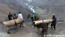 Afghanistan Dorfbewohner mit Eseln