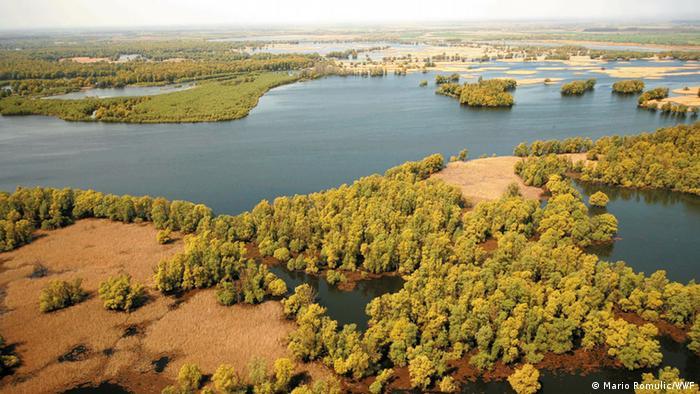 Wetlands in Croatia's Kopacki Rit Nature Park