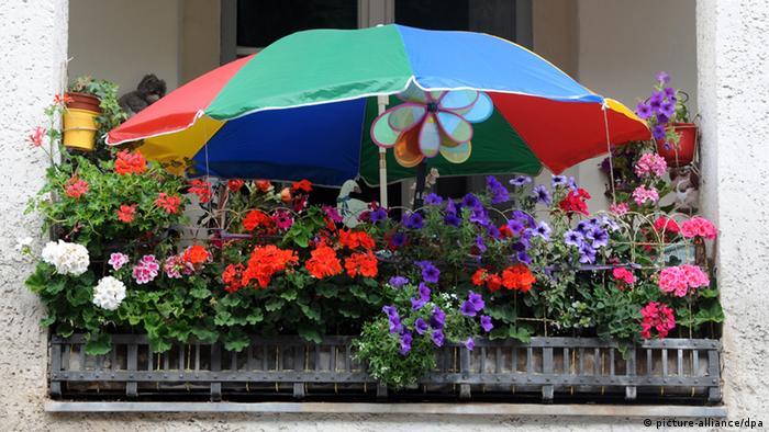 Balkon mit Blumen und Sonnenschirm (Foto:dpa)
