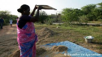 A farmer sifting grains