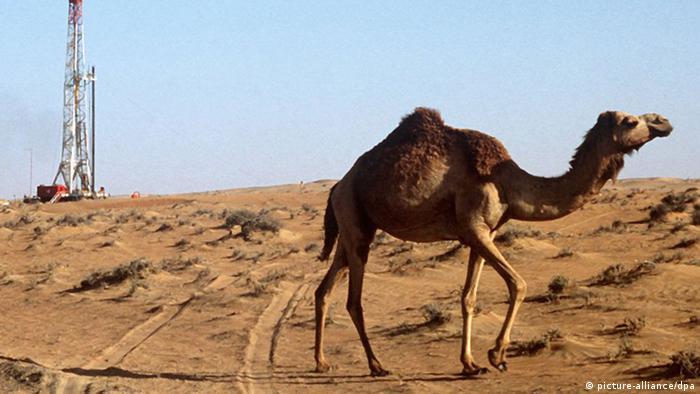 Erdölförderung in Vereinigten Arabischen Emiraten (picture-alliance/dpa)