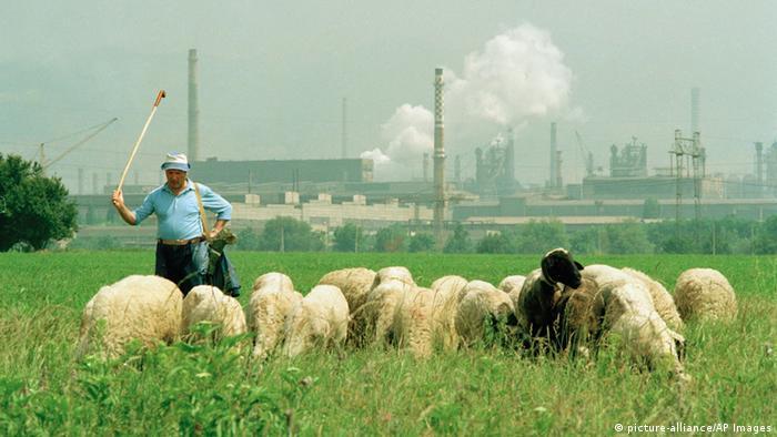 Schäfer mit Schafherde vor dampfenden Schloten, Bulgarien (picture-alliance/AP Images)