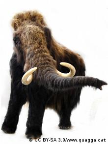 A model of the woolly mammoth (Photo: CC BY-SA 3.0/www.quagga.cat/ Quelle: http://commons.wikimedia.org/wiki/File:Mammothquagga.jpg)
