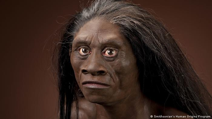 Reconstruction of a female Homo floresiensis