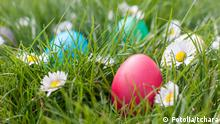 Easter eggs in the grass, Copyright: Fotolia/tchara