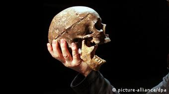 A skull in a scene from Shakespeare's Hamlet, Copyright: picture-alliance/dpa