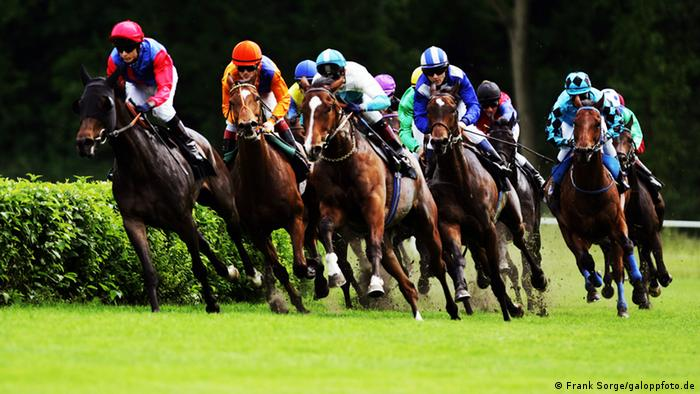 Horses running the course at Hoppegarten race course, Copyright: Frank Sorge/galoppfoto.de