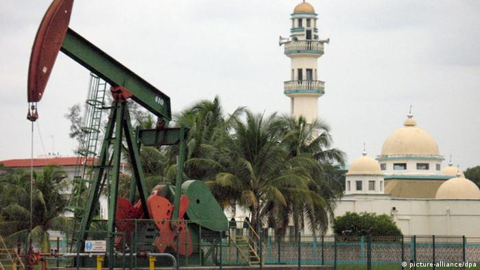 Japan Brunei Moschee (picture-alliance/dpa)