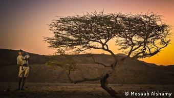 Un musicien joue dasn le désert, une photo de Mosaab Alshamy, vainqueur des Bobs 2014