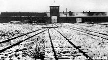Deutschland KZ zweiter Weltkrieg Konzentrationslager Auschwitz Gleise