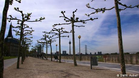 Bild von der Rheinuferpromenade mit Blick auf die Baumallee und den Rheinturm.