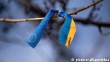 An einem Ast in Dresden (Sachsen) hat ein Unbekannter am 18.02.2014 ein Band mit dem Symbol der Europäischen Union und den Landesfarben der Ukraine verknotet. In der Ukraine wird seit Monaten um die Macht gekämpft. Foto: Arno Burgi/dpa