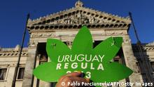 Bildunterschrift:People take part in a demo for the legalization of marijuana in front of the Legislative Palace in Montevideo, on December 10, 2013, as the Senate discuss a law on the legalization of marijuana's cultivation and consumption. Uruguays parliament is to vote Tuesday a project that would make the country the first to legalize marijuana, an experiment that seeks to confront drug trafficking. The initiative launched by 78-year-old Uruguayan President Jose Mujica, a former revolutionary leader, would enable the production, distribution and sale of cannabis, self-cultivation and consumer clubs, all under state control. AFP PHOTO/ Pablo PORCIUNCULA (Photo credit should read PABLO PORCIUNCULA/AFP/Getty Images)